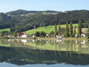 Danube 300 x 225